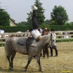 Fête du poney-club 2005 - Fete2005_017.jpg